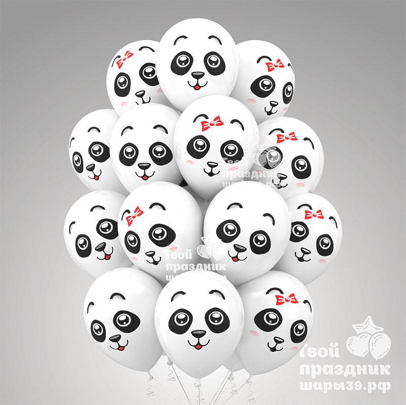 Воздушные шарики панды в Калининграде. Шары39.рф